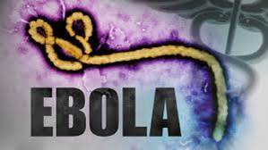 Ebola Virus microscopic view